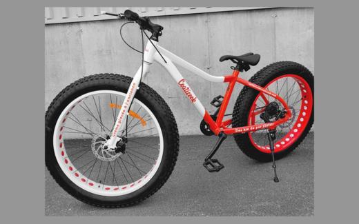 Vélo à roue surdimensionnées (fatbike) et prix secondaire
