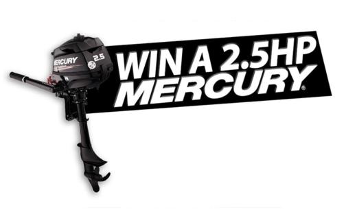 Moteur de bateau 2.5HP four stroke Mercury