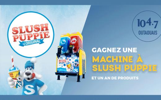 Machine à Slush Puppie 2 saveurs et 1 an de produits
