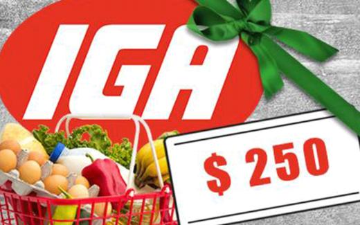 10 cartes cadeaux épicerie IGA de 250 $