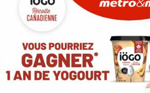 6 x 1 an de yogourt Iögo